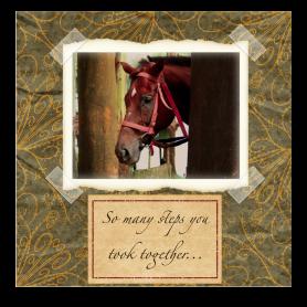 horse-sympathy-card