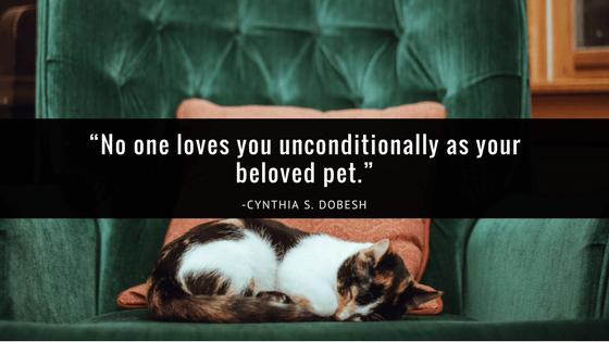 pet-loss-quote-sympathy-card