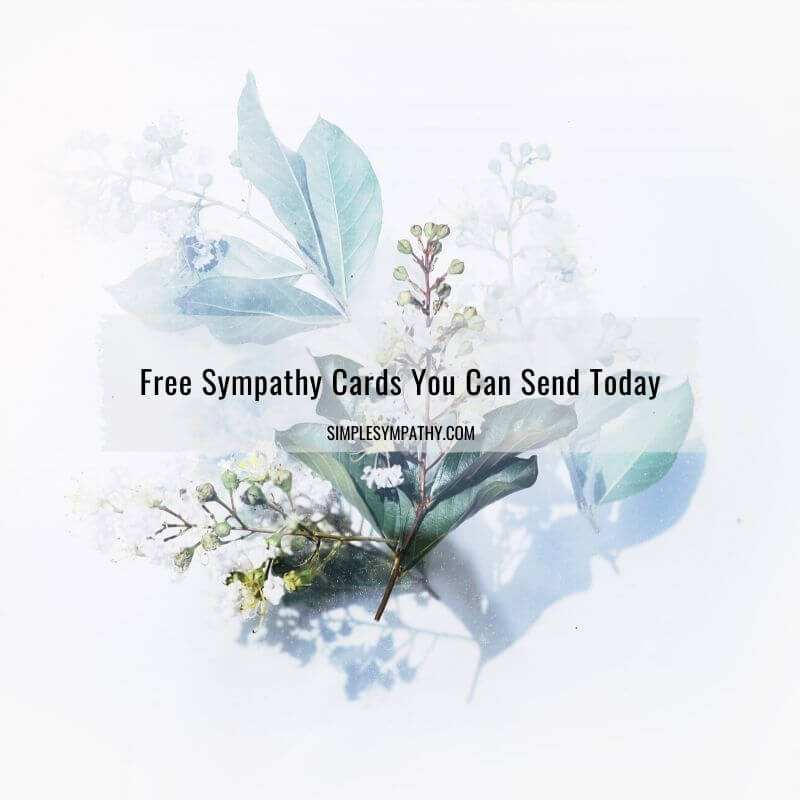 Free Sympathy Cards You Can Send Today 2