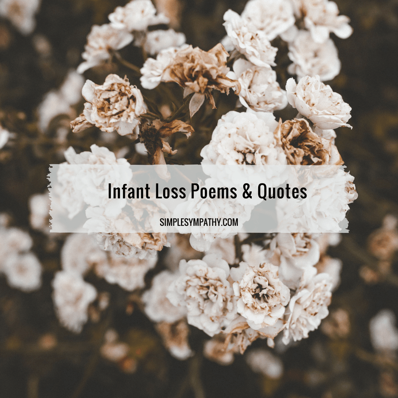 Infant Loss Poems 3