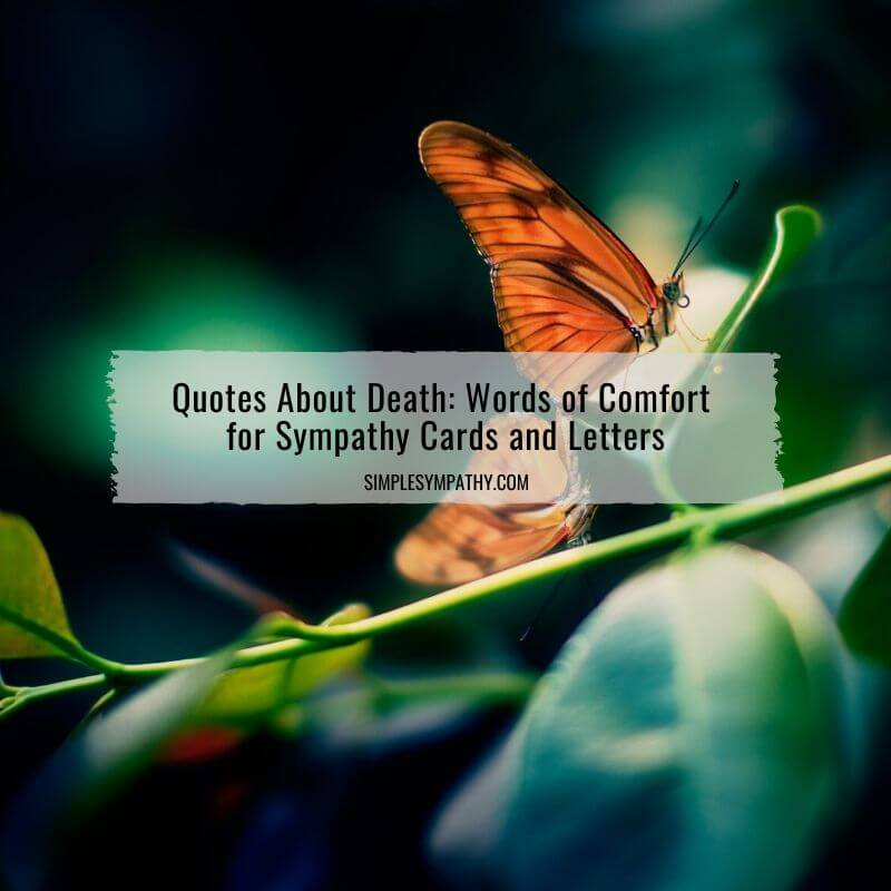 Quotes About Death: Words of Comfort for Sympathy Cards and Letters 2