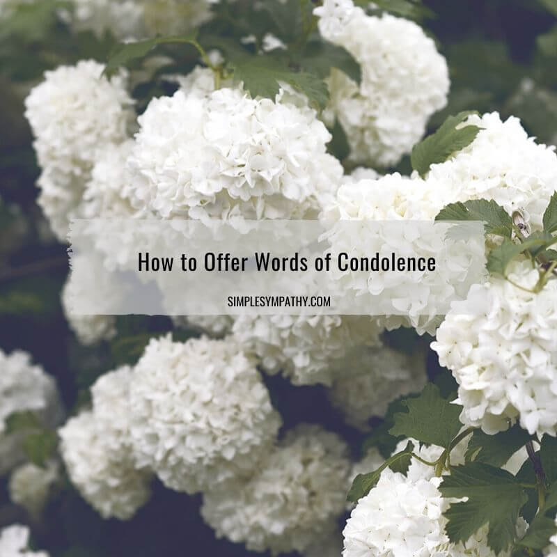 How to Offer Words of Condolence 2